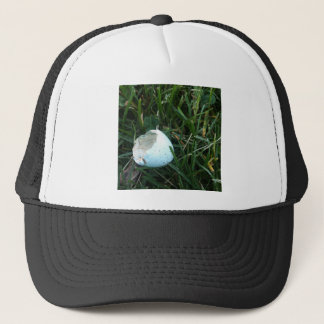 A Hatched Robin's Egg Trucker Hat