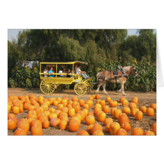 A hayride at the pumpkin patch card