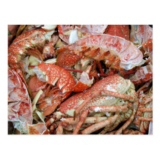 A heap of cooked Lobster and Crab shells Post Card