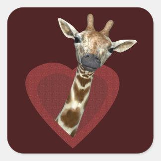 A Heart For Giraffes Square Sticker