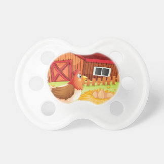 A hen and her eggs at the backyard BooginHead pacifier