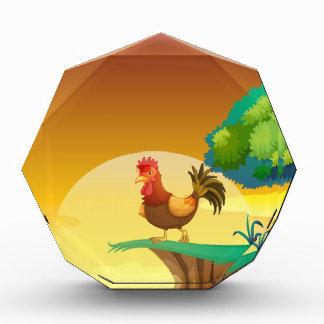 A hen awards