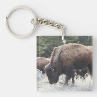 A Herd of Brown Bison Graze in a grassy Meadow Keychain
