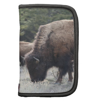 A Herd of Brown Bison Graze in a grassy Meadow Folio Planner