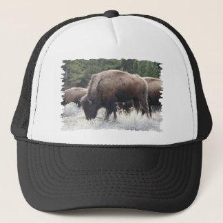A Herd of Brown Bison Graze in a grassy Meadow Trucker Hat