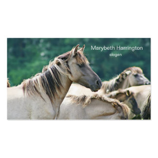 A herd of Brumby Horses from Australia Business Card