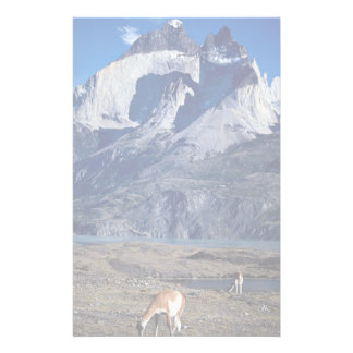 A herd of guanacos, Torres del Paine National Park Personalized Stationery