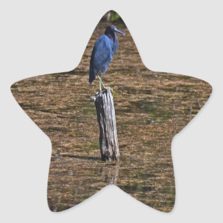 A Heron in the Slough Star Sticker