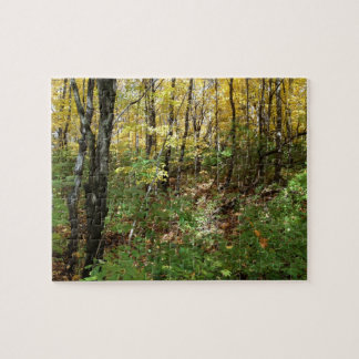 A Hike in the Woods Puzzle