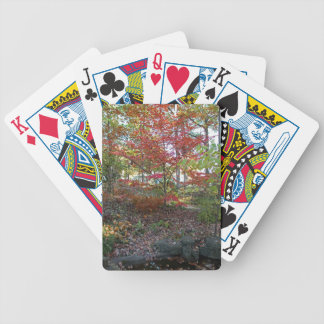A Hint of Red Velvet Bicycle Playing Cards