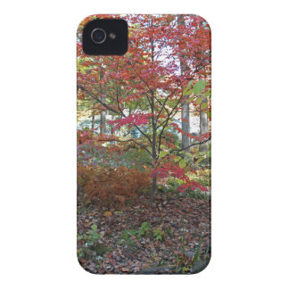 A Hint of Red Velvet Case-Mate iPhone 4 Case