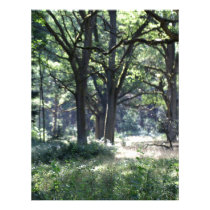 A historical wood pasture with oak trees. letterhead