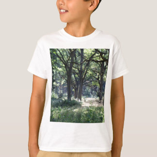 A historical wood pasture with oak trees. T-Shirt