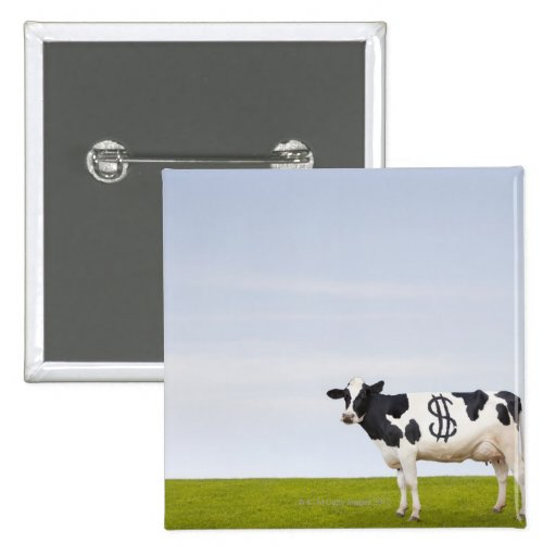 A Holstein Dairy cow with spots in the shape of 2 Inch Square Button