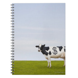 A Holstein Dairy cow with spots in the shape of Notebook