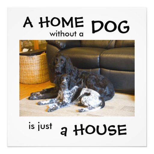 A home without a dog is just a house - wall art photo