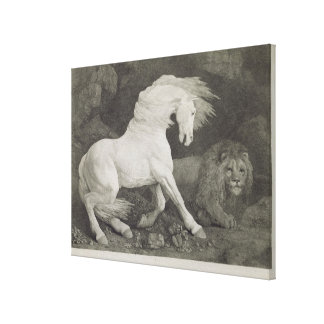 A Horse Affrighted by a Lion, engraved by the arti Canvas Print