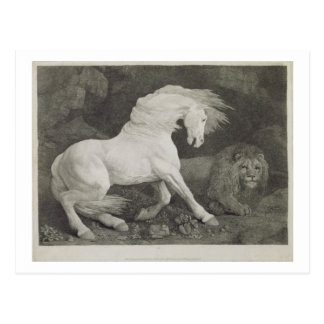 A Horse Affrighted by a Lion, engraved by the arti Postcard