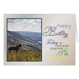 A horse birthday card. card