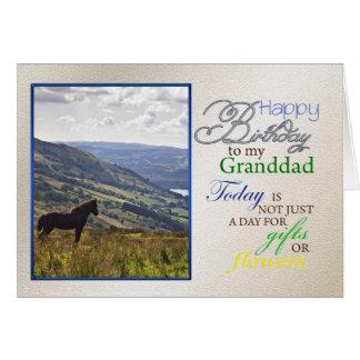 A horse birthday card for granddad.
