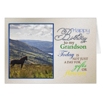 A horse birthday card for grandson.