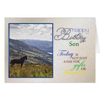 A horse birthday card for son.