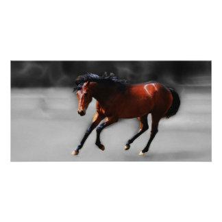 A horse called Riboking Photo Card
