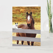 """A Horse & Her Cat"" Greeting Card"