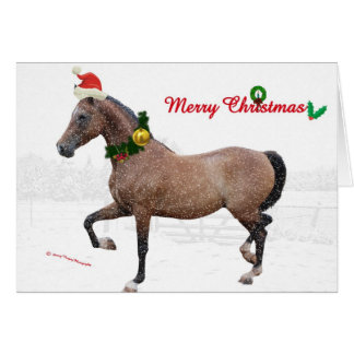 A horse Merry Christmas Greeting Card