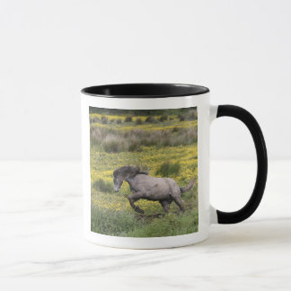 A horse running in a field of yellow wildflowers mug