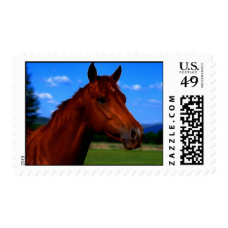 A horse standing proud postage
