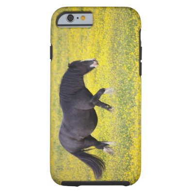 A Horse Walking In A Field Of Yellow Flowers Tough iPhone 6 Case