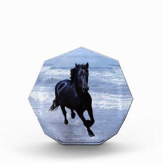 A horse wild and free acrylic award