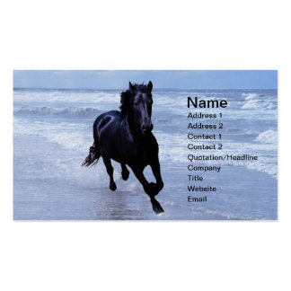 A horse wild and free business card