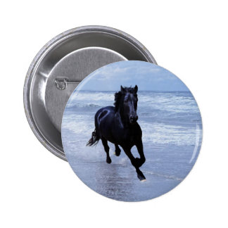 A horse wild and free button