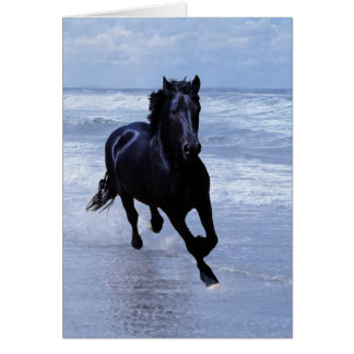 A horse wild and free greeting card