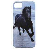 A horse wild and free iPhone SE/5/5s case