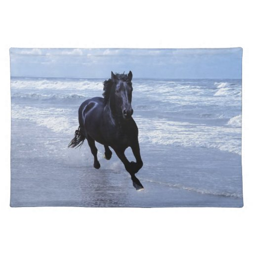 A horse wild and free place mat