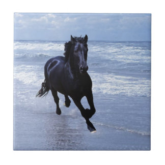 A horse wild and free small square tile