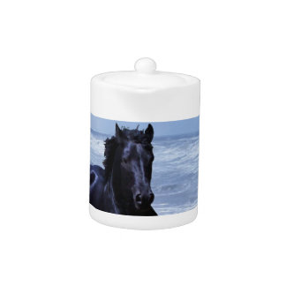 A horse wild and free