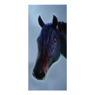 A horses curiosity rack card