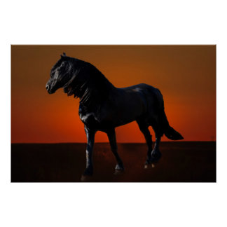 A horses sunset romp posters