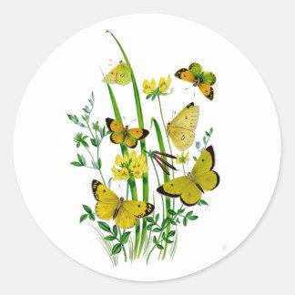 A Host of Butterflies Sticker