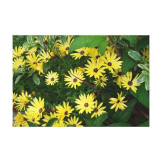 A host of yellow stars canvas print
