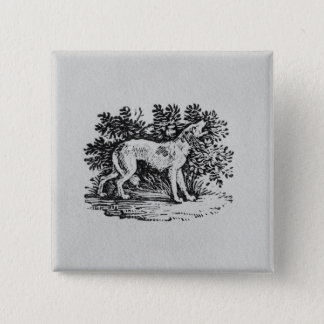 A Hound from 'History of Quadrupeds' Button