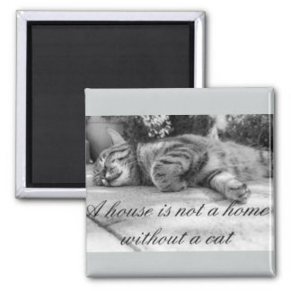 A house is not a home without a cat magnet! 2 inch square magnet