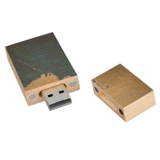 A house on a land with no life around it wood USB 2.0 flash drive