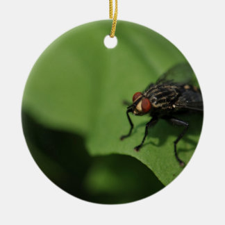 A housefly on a Green leaf Ceramic Ornament