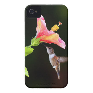 A hummingbird BlackBerry Bold 9700 hard case