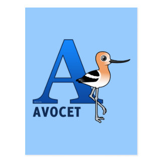 A is for Avocet Postcard